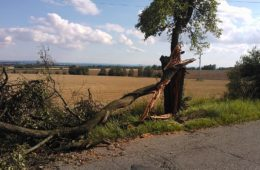 S odstraňováním škod po víkendové živelné pohromě pomáhá i SÚS Královéhradeckého kraje a.s.